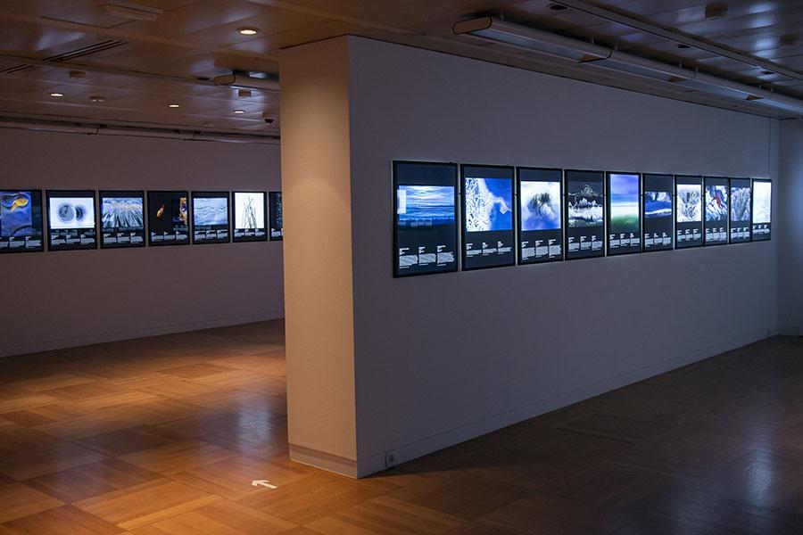 Exposición Fotografía Naturaleza
