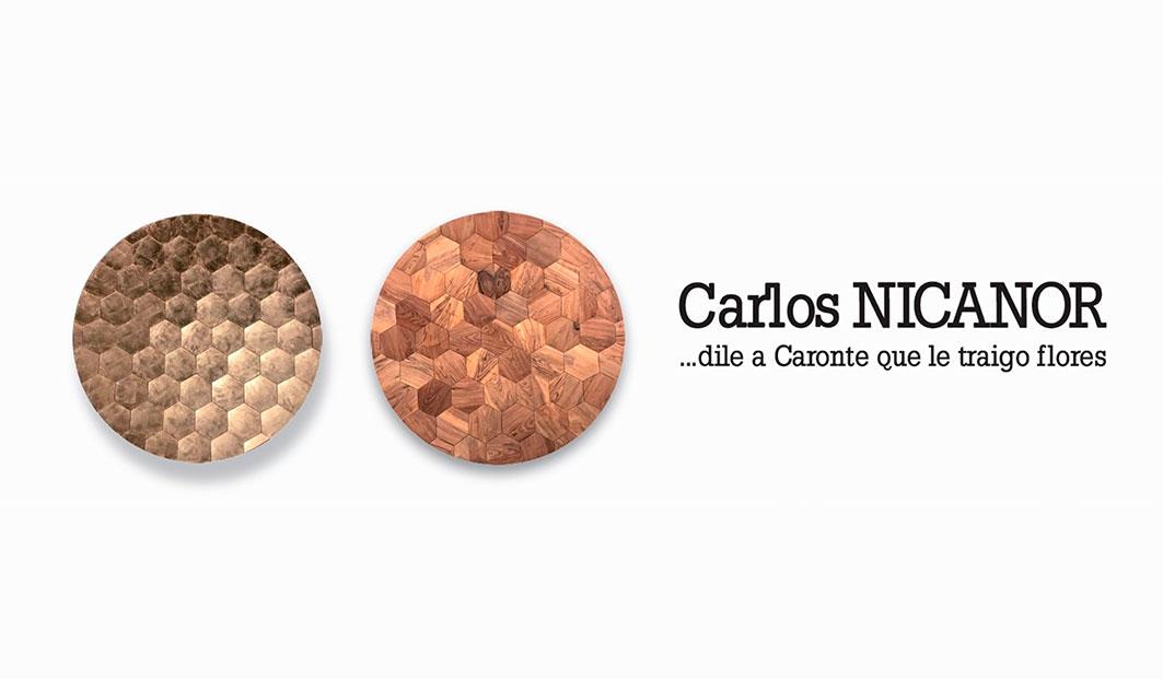 minisite carlos nicanor