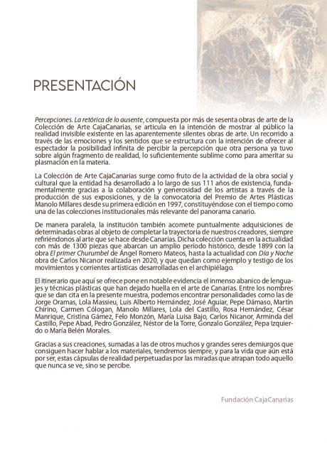 Expo Percepciones Pag2